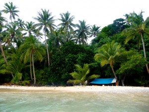 Wild Island Camping - a test trip