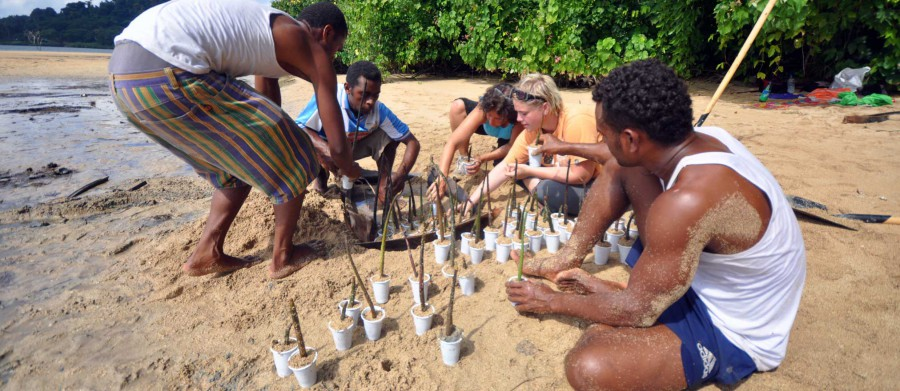 Coral Gardening team in Fiji