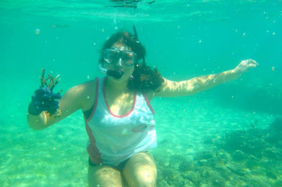 Coral gardening Fiji Island Spirit