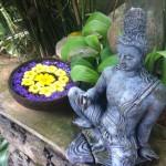 Ayuvedic Spa, Sri Lanka, Island Spirit