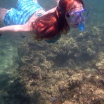 kirsty coral gardening squid