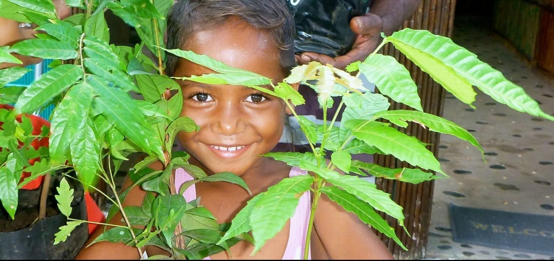 Nakia Eco Resort, Taveuni, donates young trees to increase birdlife - Island Spirit Planting trees fiji volunteering