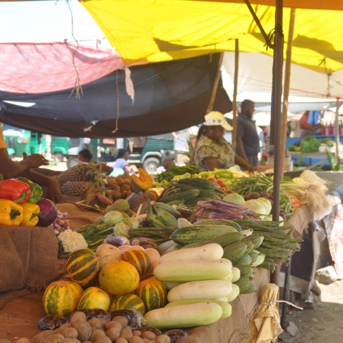 Fijian market as UN General Assembly focuses on Covid and Climate Change