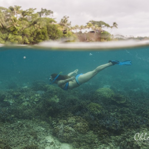 Coral Gardening Island Spirit Volunteering Fiji