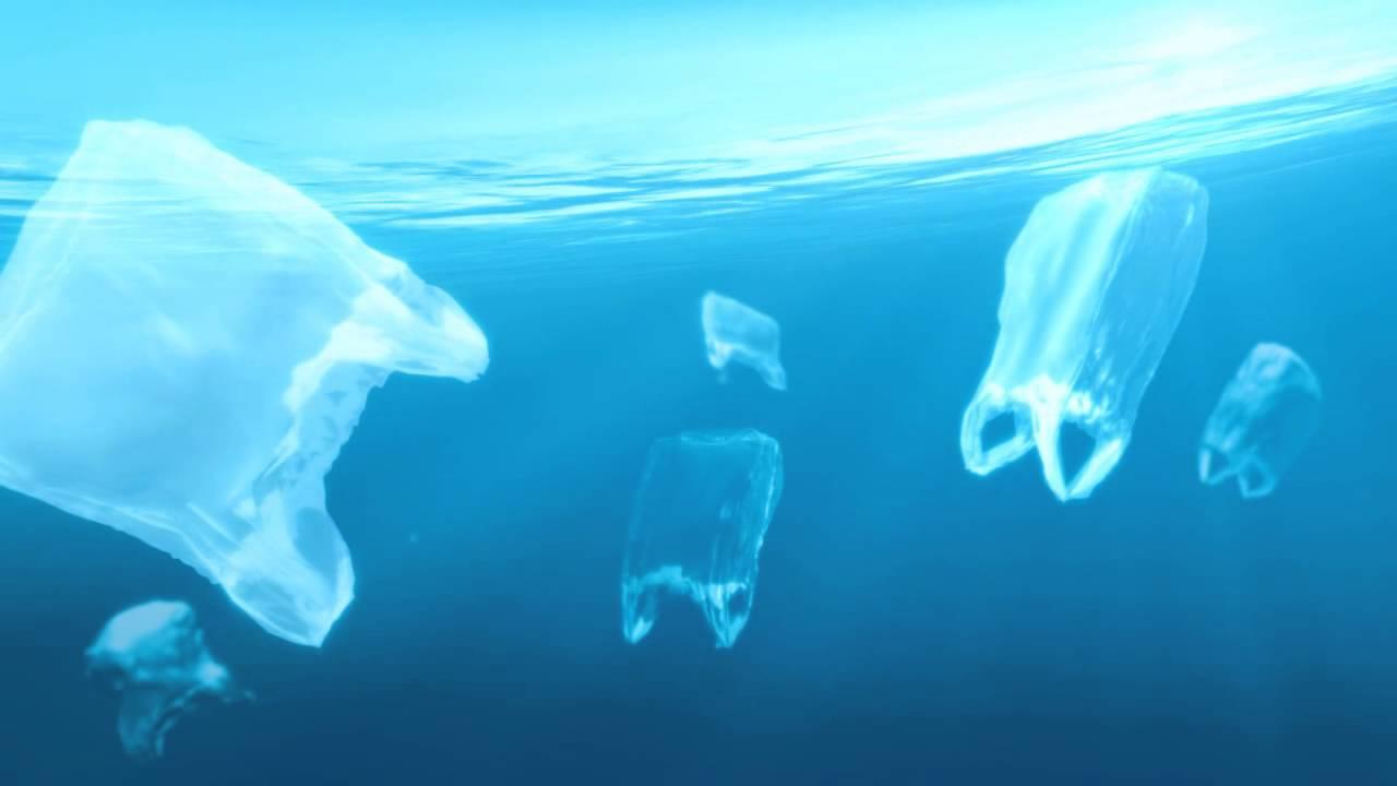 plastic bag pollutes oceans