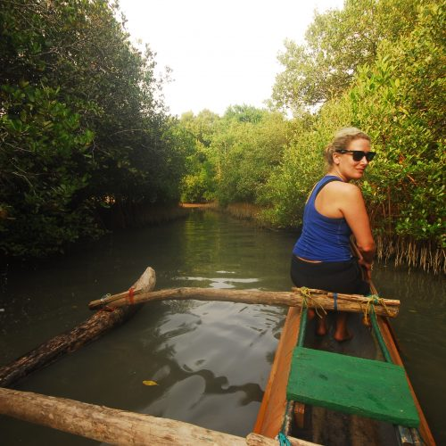 Responsible travel week 2018 Mangroves Island Spirit Sri Lanka