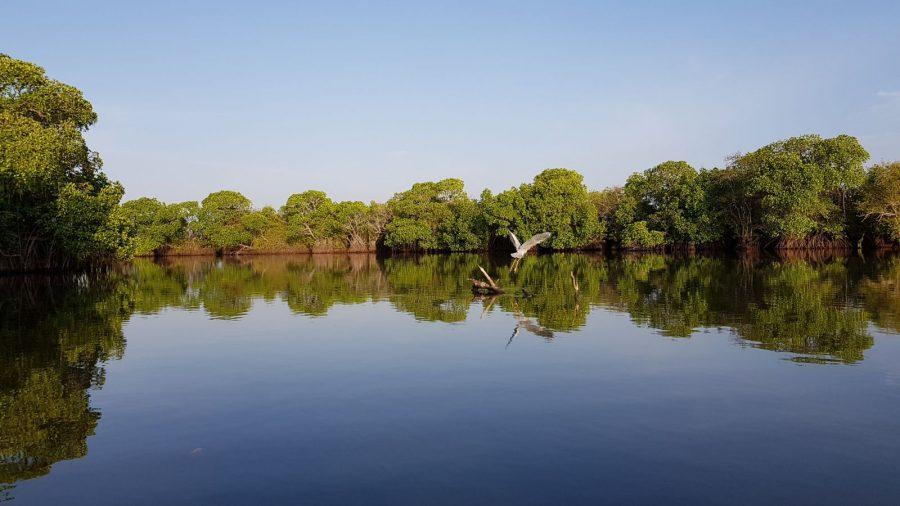 Kottuka Lagoon Pottuvil in SriLanka