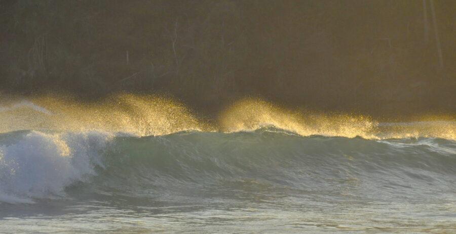 Waves Surfing Hiriketiya Sri Lanka