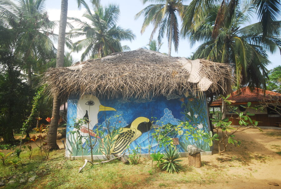 Mural Kitesurflanka Kalpitiya Sri Lanka